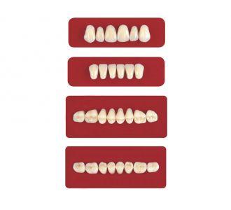 Акриловые зубы Unicryl боковые верхние форма 11 цвет B3 8шт
